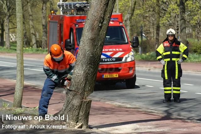 Sint Jorisweg afgesloten nadat boom dreigt om te vallen Delft