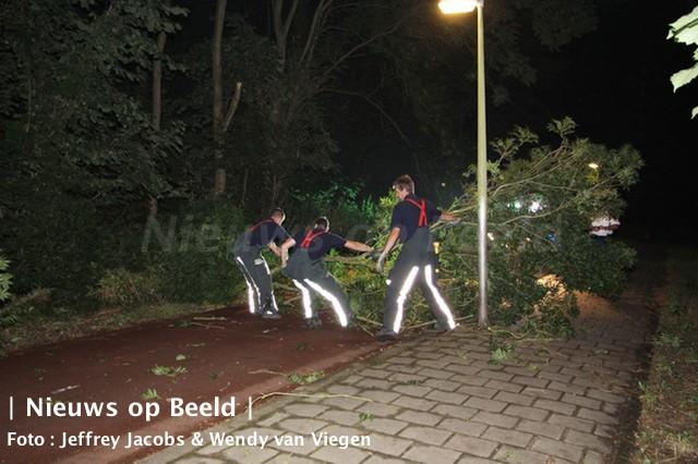 Struik hangt gevaarlijk over fietspad Ooievaarspad Capelle a/d IJssel