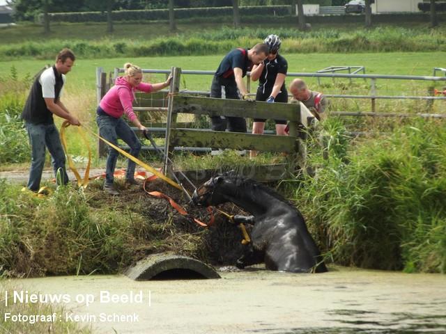 Meisje raakt te water met paard Klinkerseweg Zwartewaal
