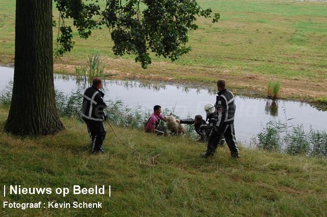 foto-kevin-schenk-hvdier-essendijk-rhoon-15-08-13-2.jpg