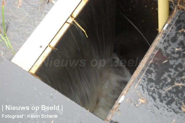 10-09-13-JanvAlmondestraat-Poortugaal-Waterkip4.jpg