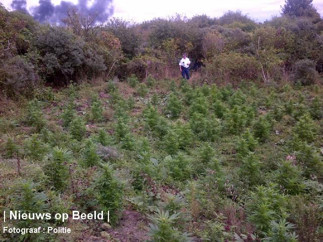 18-09-13-Oostvoorne-Hennepvelden-Politie2.jpg