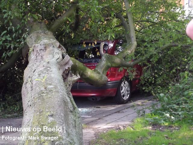 21-9-13-boom-omgevallen-blaauwstraat-03.jpg