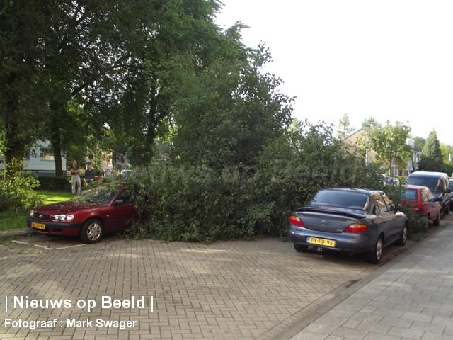 21-9-13-boom-omgevallen-blaauwstraat-04.jpg