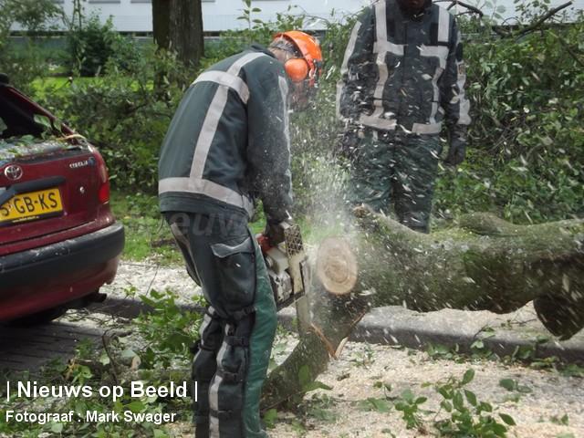 21-9-13-boom-omgevallen-blaauwstraat-05.jpg