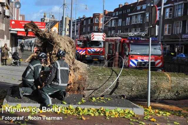 28-10-13-Beijerlandselaan-Rotterdam-Stormschade3