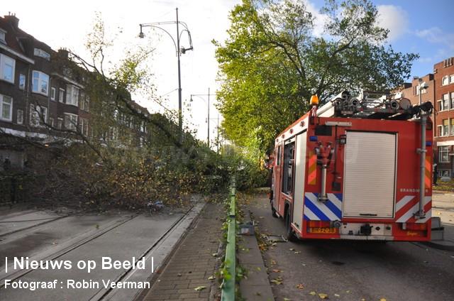 28-10-13-Beijerlandselaan-Rotterdam-Stormschade4