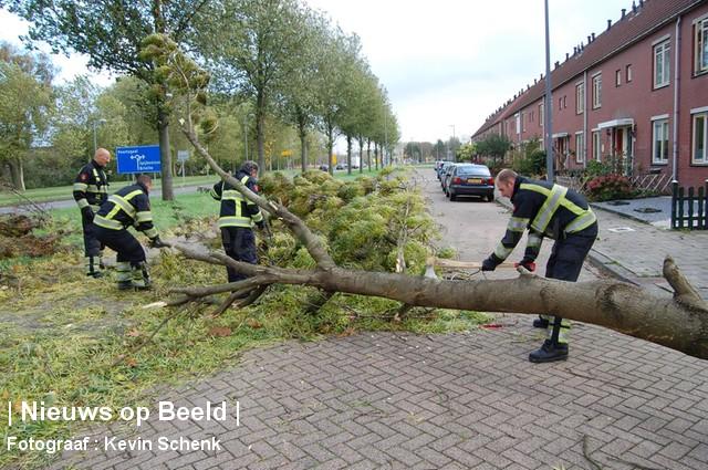 28-10-13-HenkMiliusstraat-Hoogvliet-Stormschade1