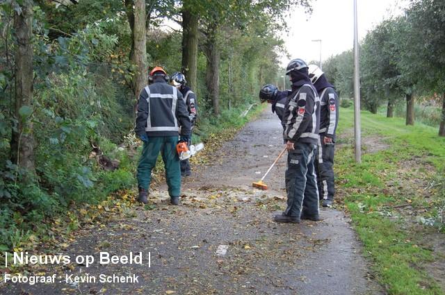 28-10-13-Zwaardijk-Barendrecht-Boompje1