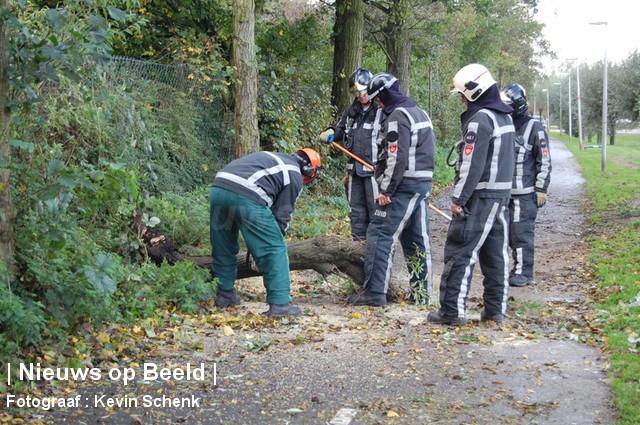 28-10-13-Zwaardijk-Barendrecht-Boompje3
