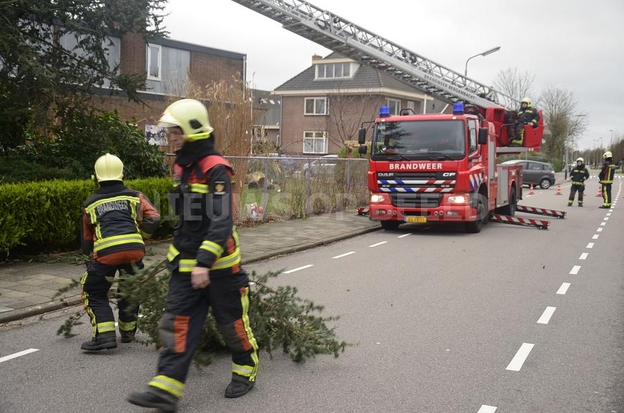 Brandweer verwijderd loshangende takken Tussenlanen Bergambacht - Nieuws op Beeld