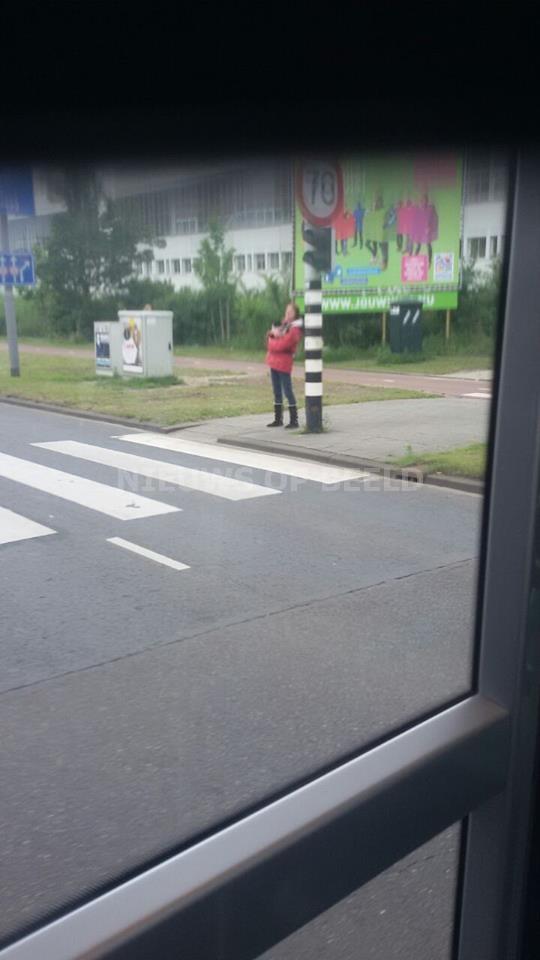 Zoekactie naar ontvoerde Tram-Poes Ake Oude Plantage Rotterdam