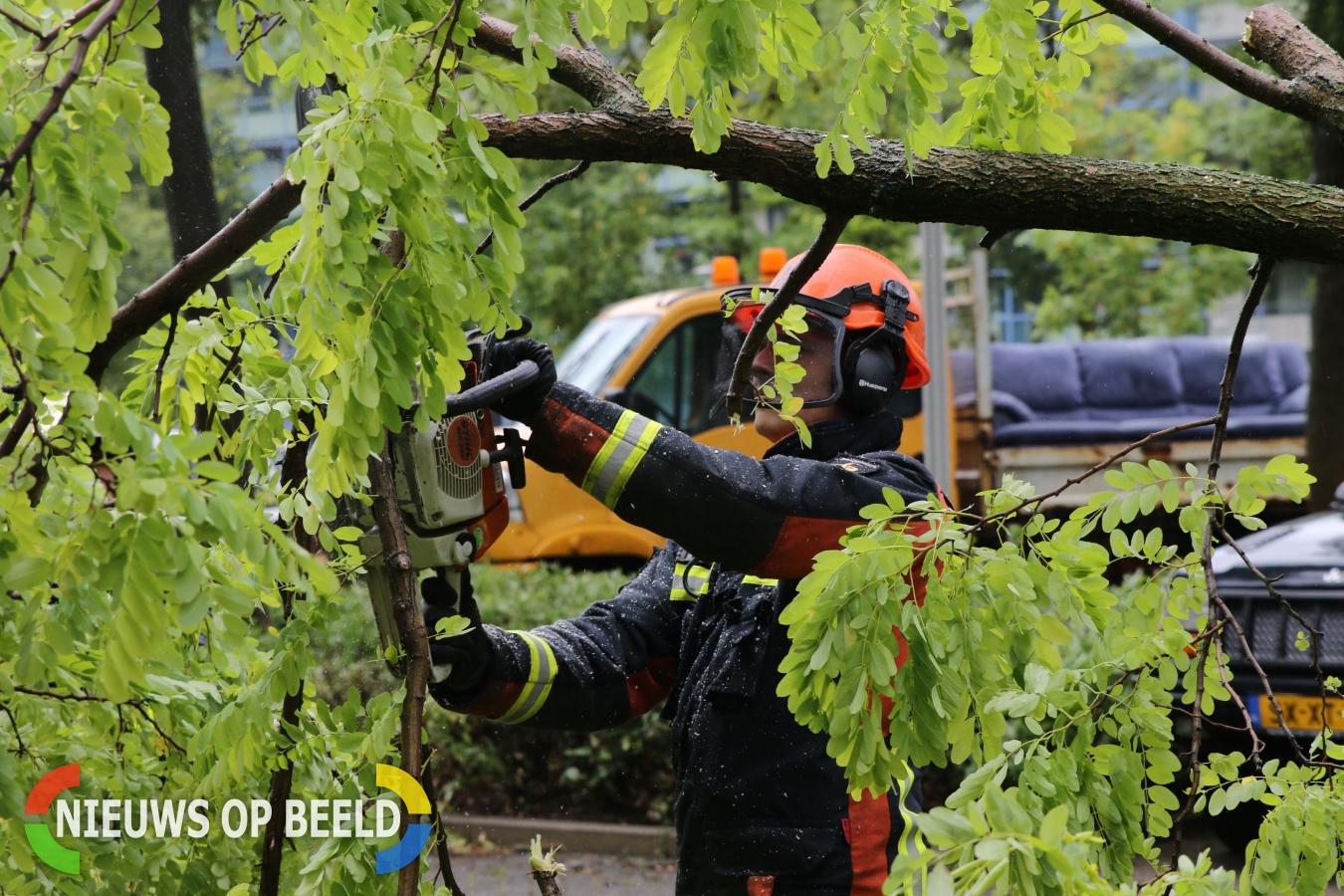 Overzicht van stormschade in Leiden, Leiderdorp, Warmond en Oegstgeest