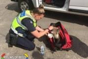 Hevige bosbranden Australie redelijk onder controle, politie verzorgt Koala Great Ocean Road