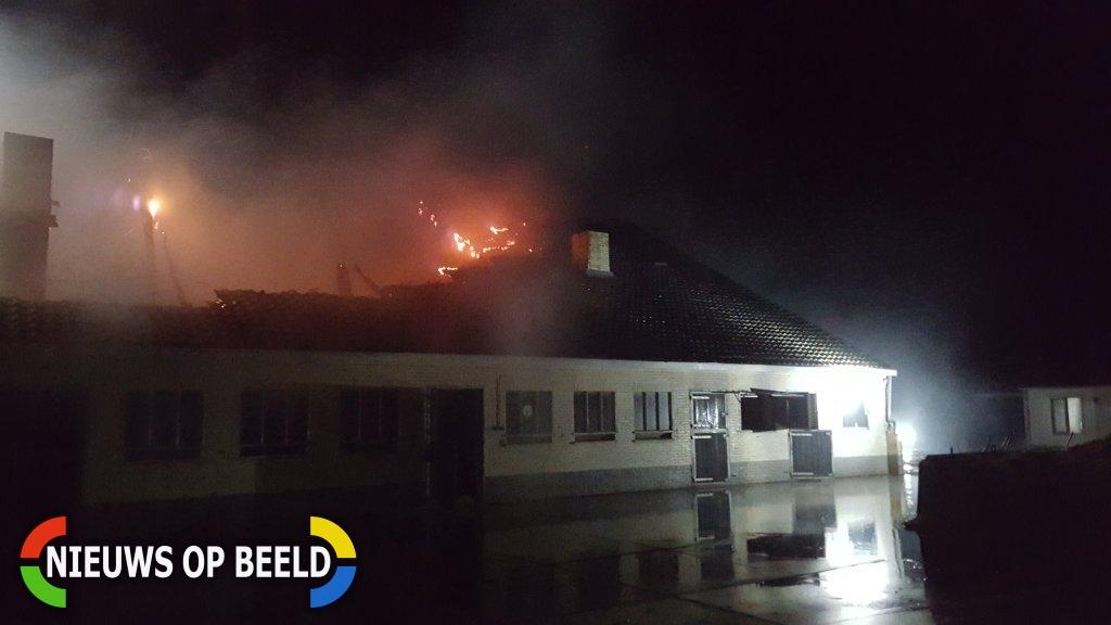 Grote uitslaande brand in paardenschuur, paarden ongedeerd Plaatweg Stellendam