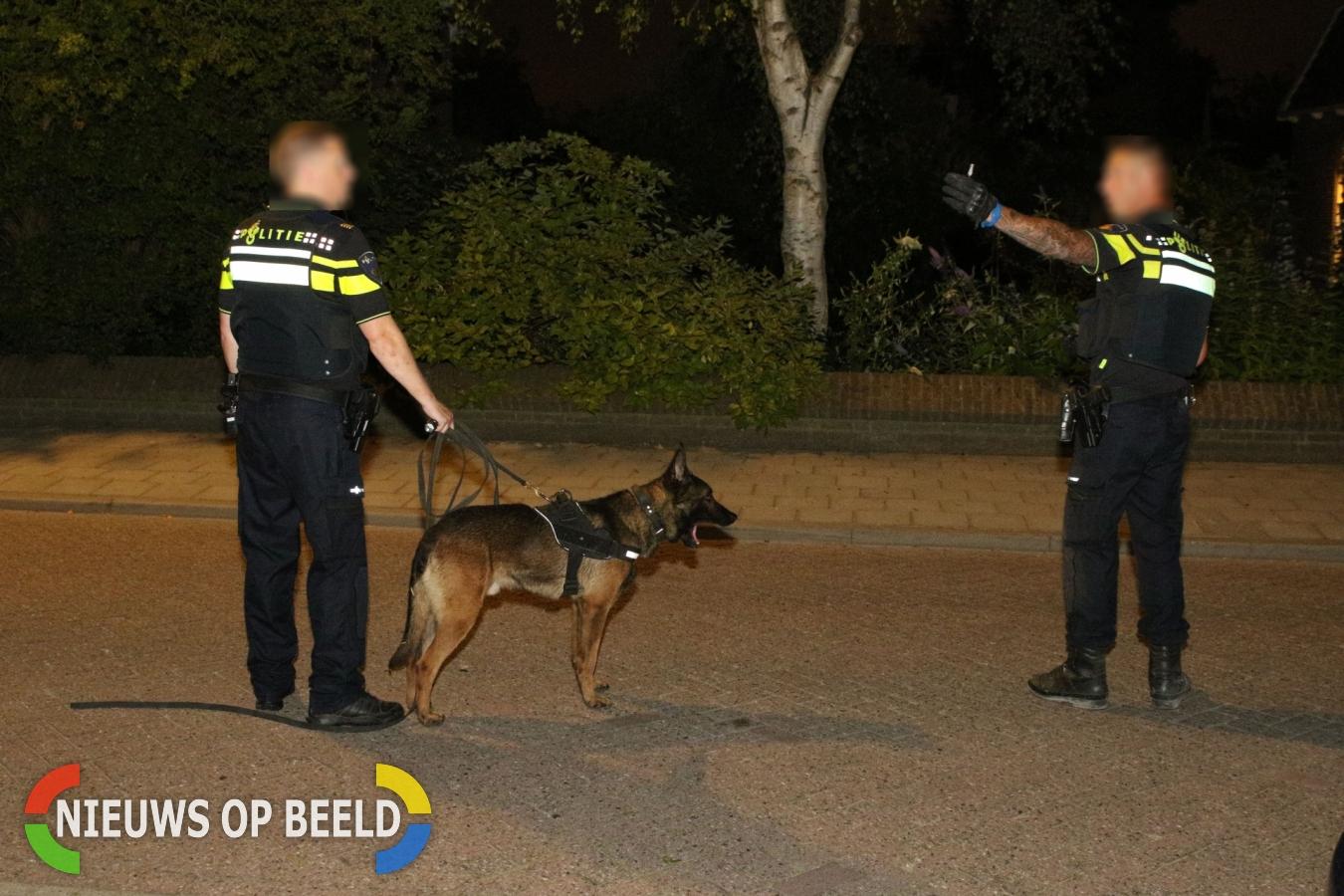 Woninginbreker op heterdaad aangehouden met hulp van politiehond Teding van Berkhoutlaan Delft