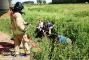 Brandweer haalt 20 jaar oud paard uit sloot Hoogvlietsekerkweg Poortugaal