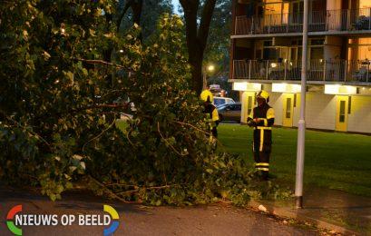 Brandweer ingezet bij loshangende tak Diederik van Teilingenlaan Zoetermeer
