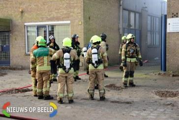Meerdere dieren gered bij grote brand in bedrijfspand James Wattweg Vlaardingen