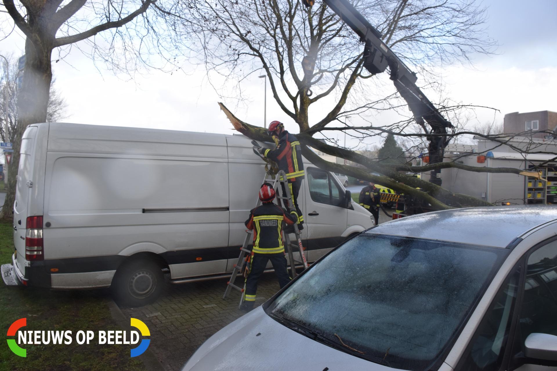 Afgevallen tak valt boven op bestelbusje Koningin wilhelminaweg Gouda
