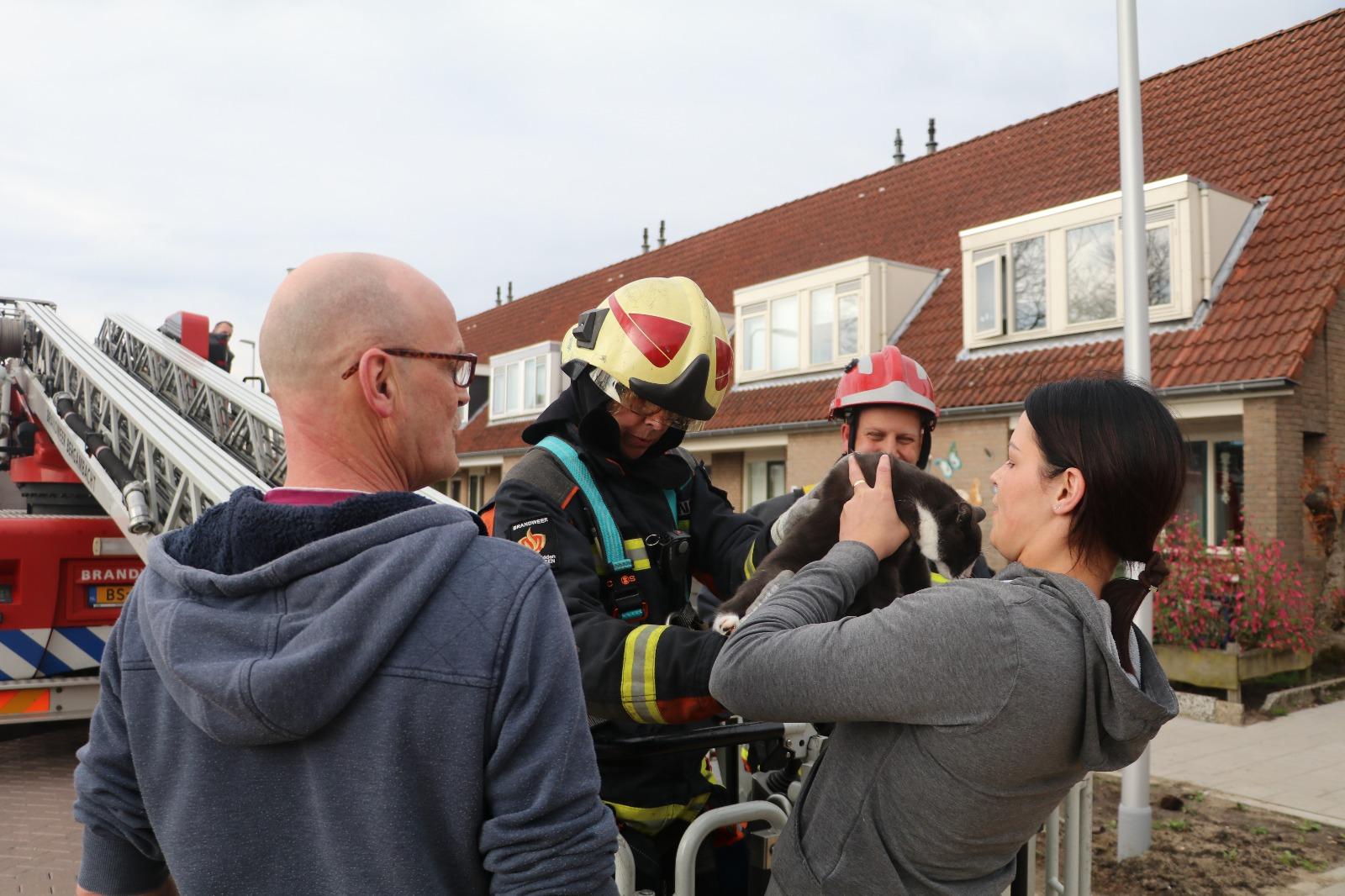 Brandweer haalt kat van dak aan de Graanakker in Waddinxveen