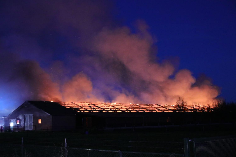 20.000 kippen komen om bij enorme schuurbrand in Barneveld