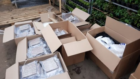 Honderden kilo's soft- en harddrugs