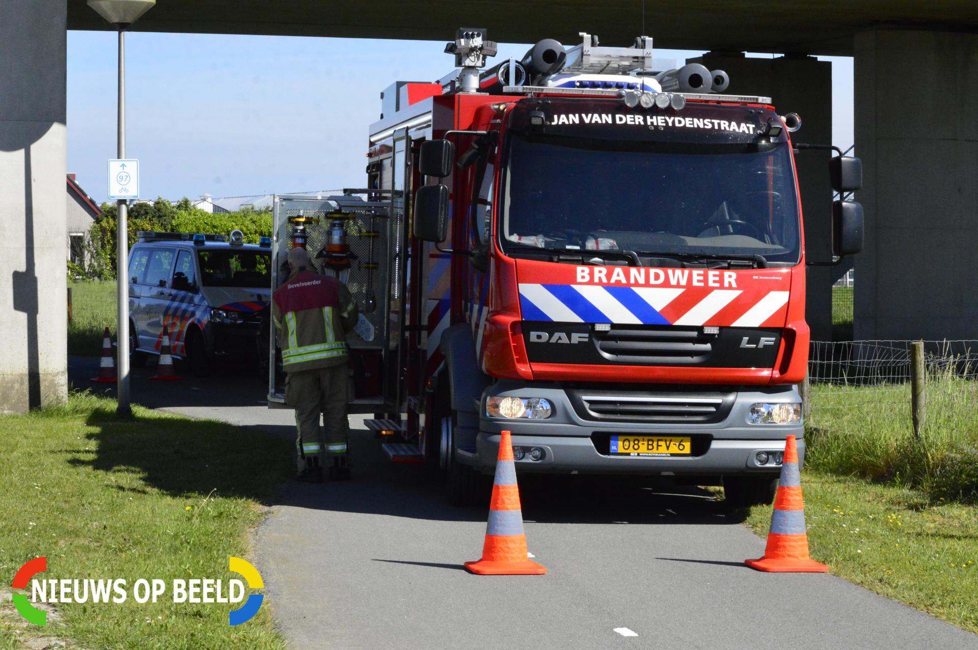 Lammetje vast in voederbak Groendalseweg Bleiswijk