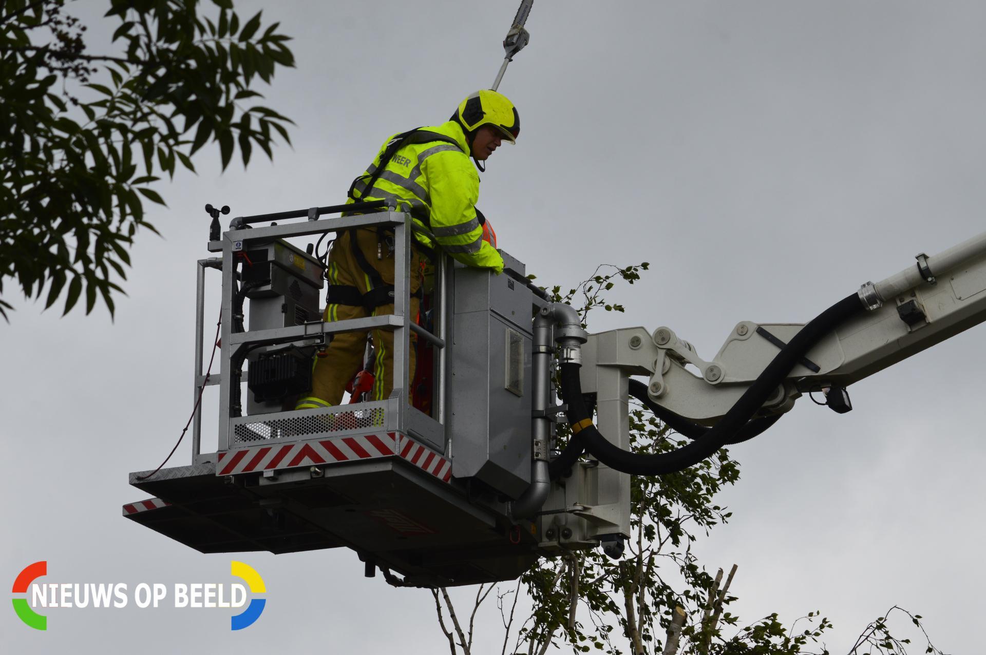Brandweer verwijderd gevaarlijk hangende tak Rivierenlaan Pijnacker