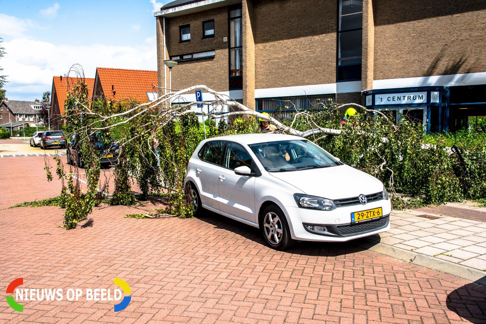 Boom valt op auto door harde wind Bernhardstraat Rhoon