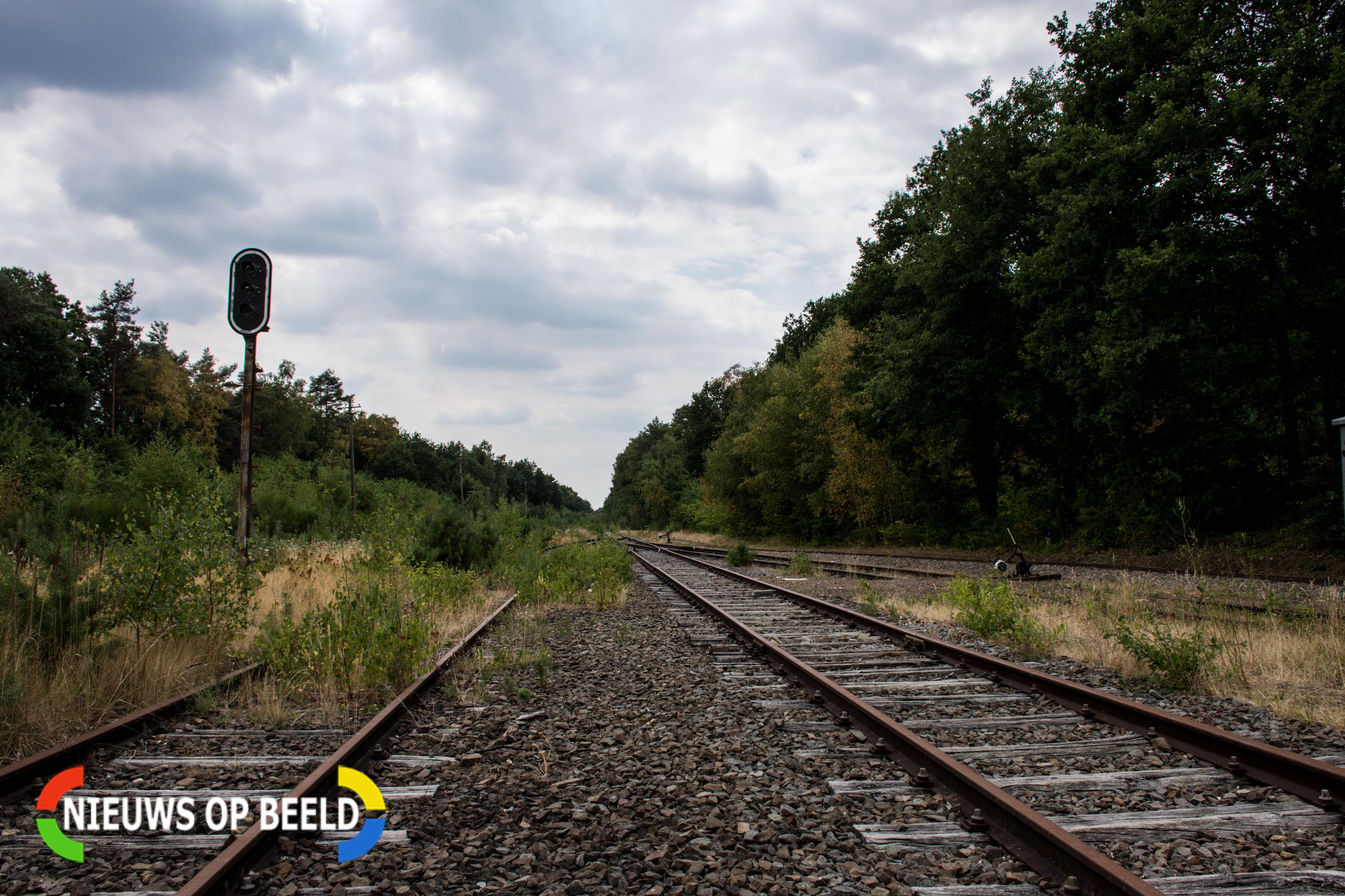 Geen treinverkeer tussen Boskoop en Gouda door omgewaaide boom