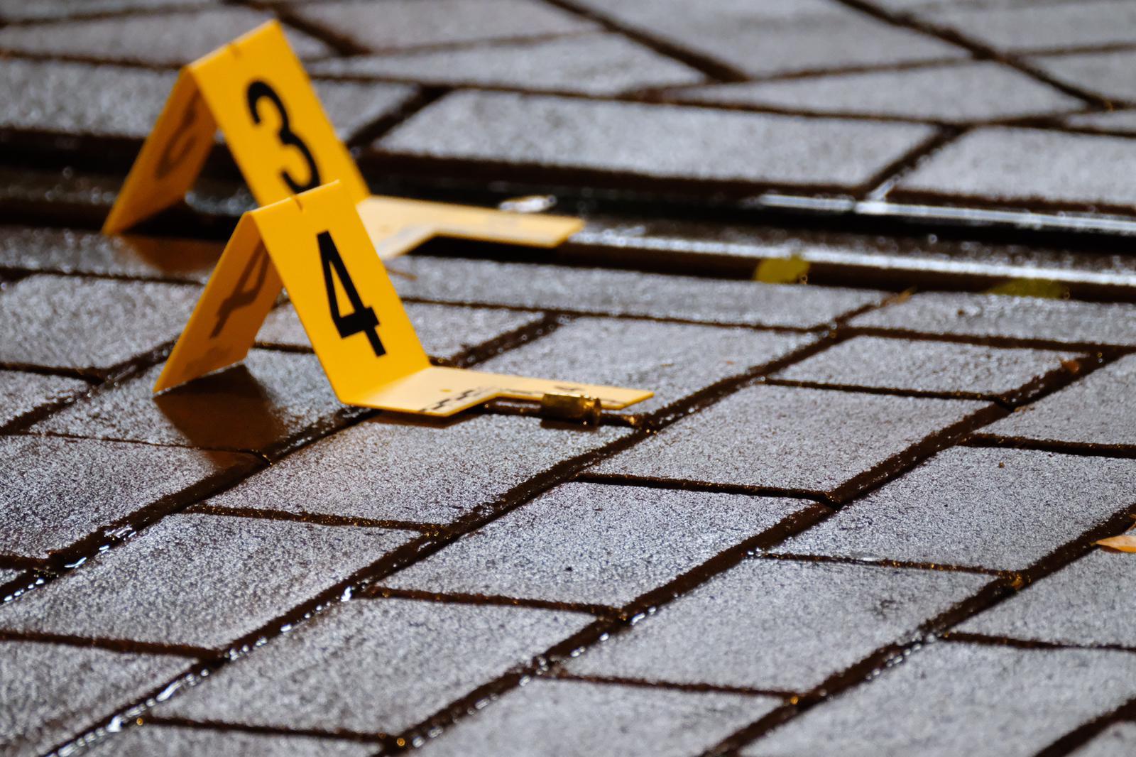 Kogelhulzen aangetroffen aan Bramentuin in Rotterdam