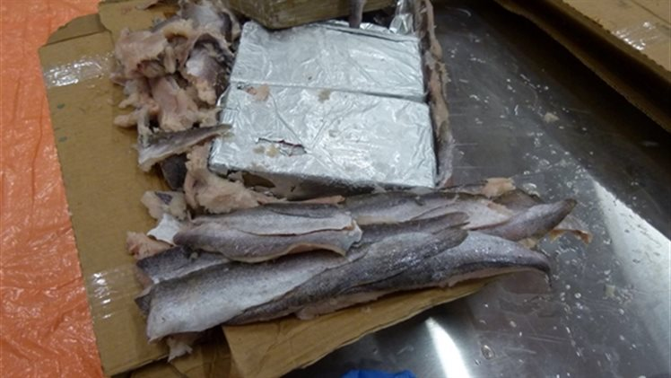 Jarenlange celstraffen na megavangst cocaïne in Rotterdamse haven