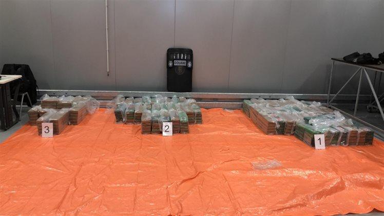 Douane vindt 750 kilo cocaïne tussen bananen in Rotterdamse haven