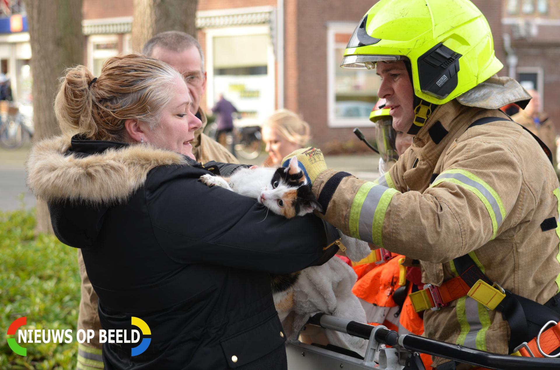 Brandweer redt kat uit dakgoot Wilhelminastraat Berkel en Rodenrijs
