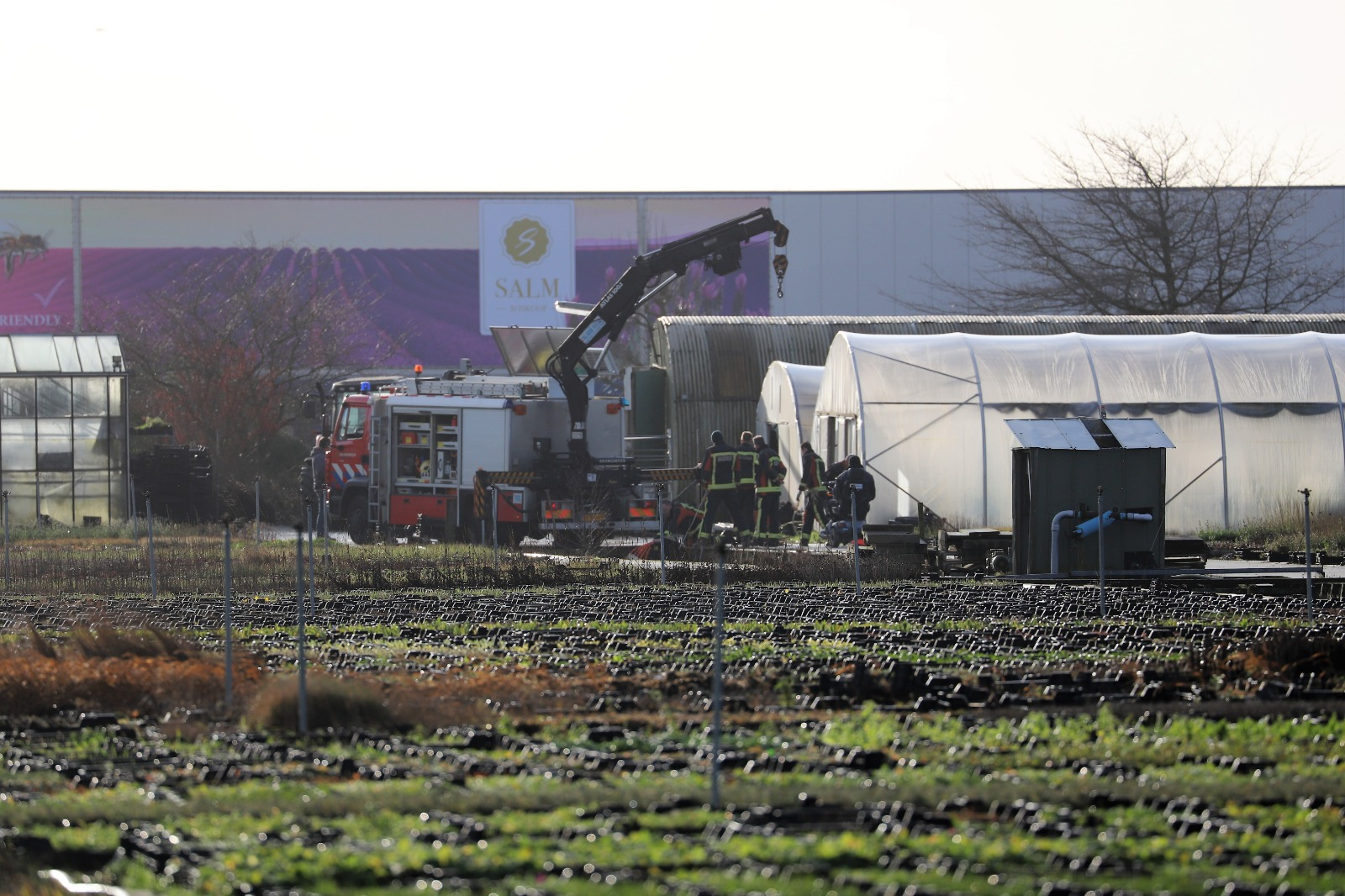 Brandweer redt koe uit sloot in Boskoop
