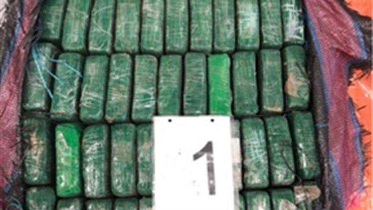 Douane vindt 1000 kilo cocaïne tussen bananen in Rotterdamse haven
