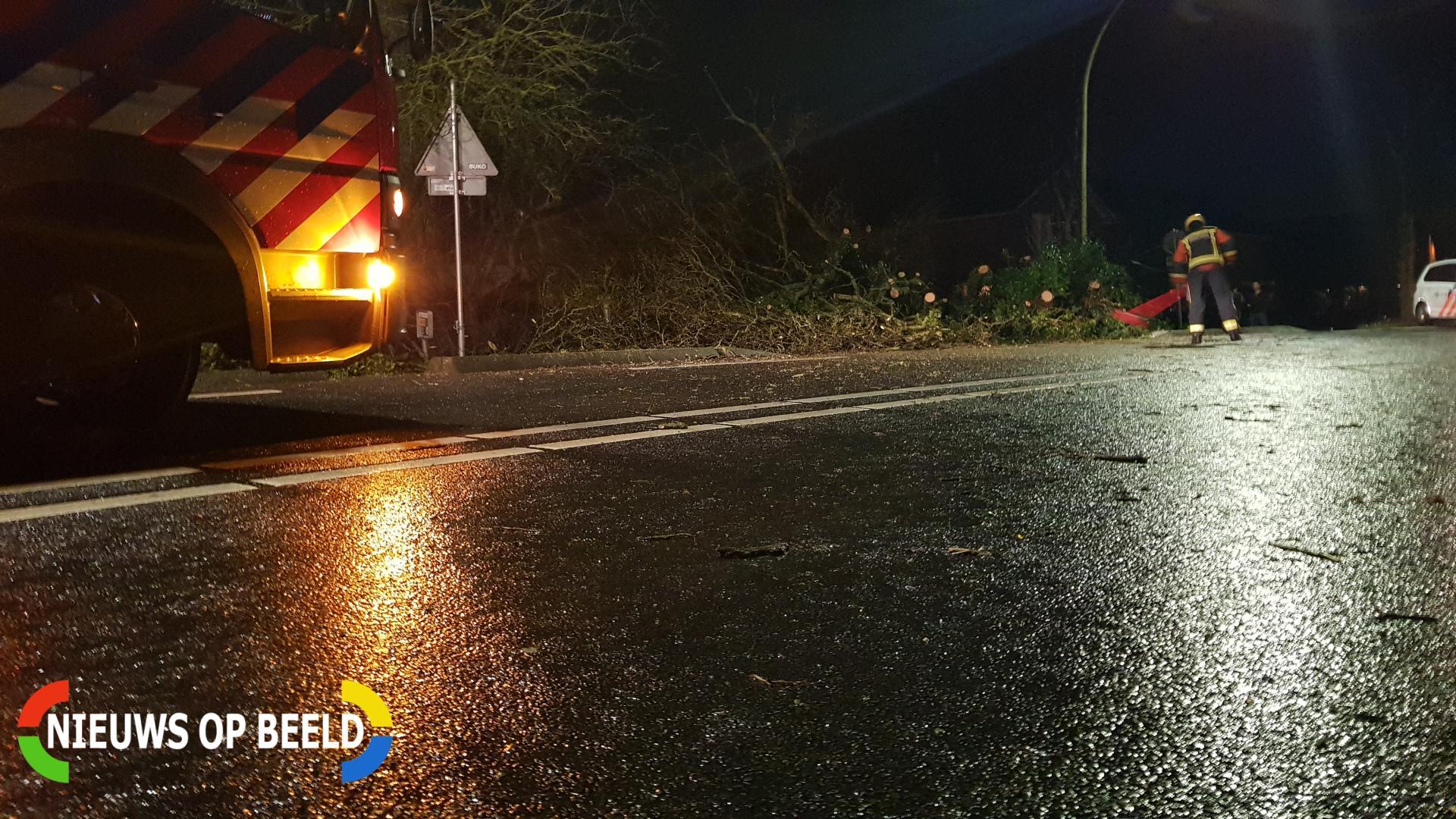 boom valt omver en blokkeert fietspad Provincialeweg West – N228 Haastrecht