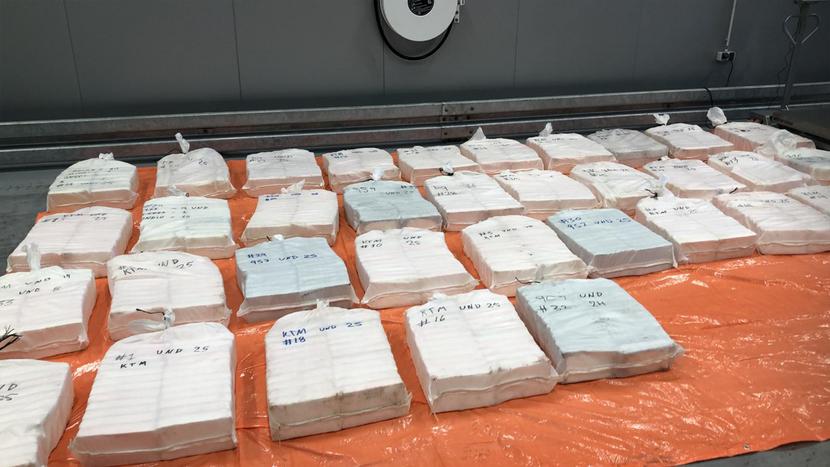 Douane onderschept 865 kilo cocaïne in container met ananassen
