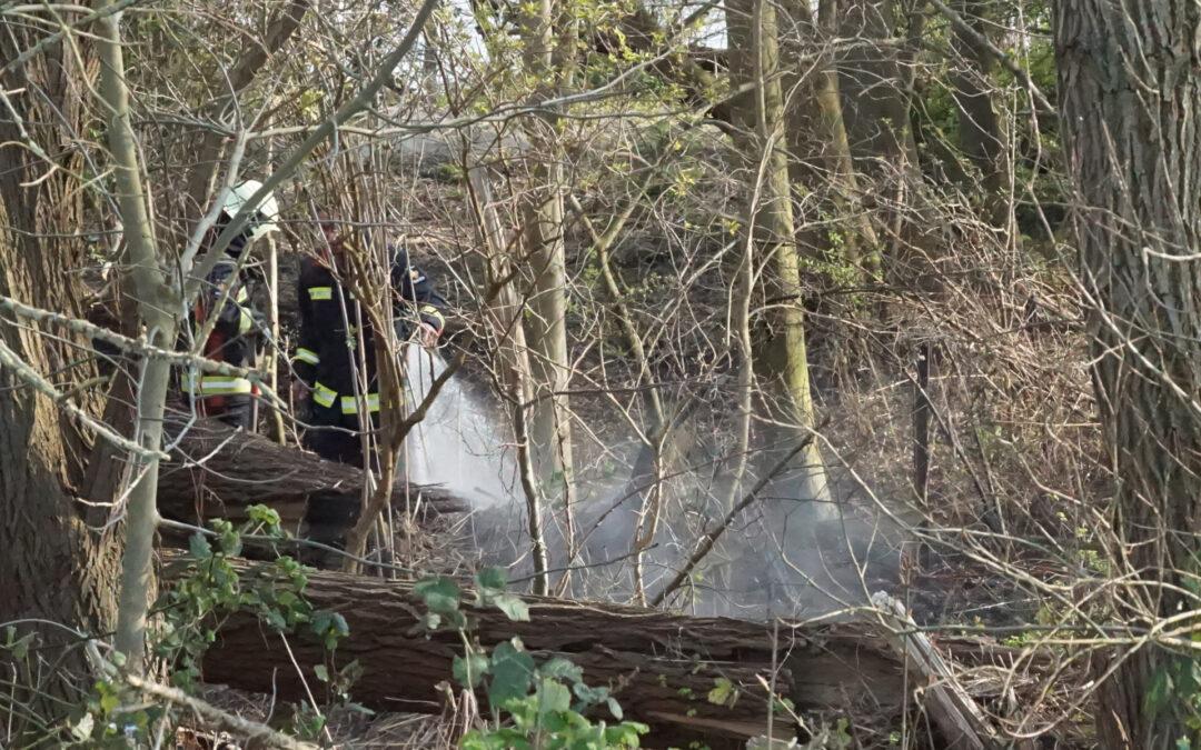 Bosschage langs rivier de Lek in brand Lekdijk West Bergambacht