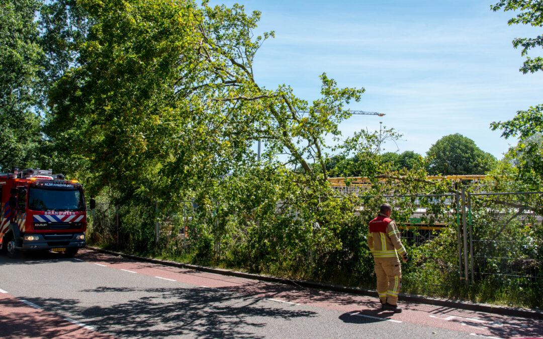 Brandweer verwijdert scheef hangende boom Viaductweg Rhoon