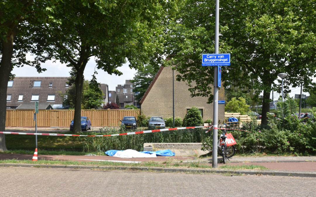Te water geraakte persoon overleden in Prins Alexander Carry van Bruggensingel Rotterdam
