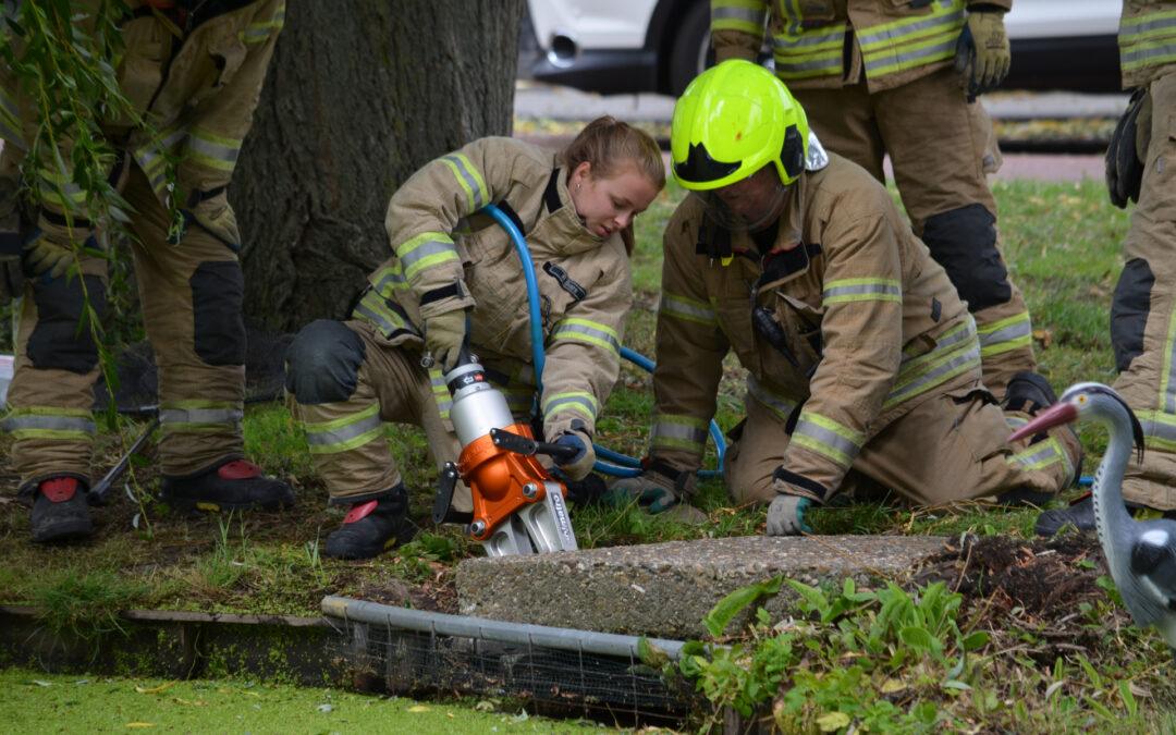 Brandweer redt eendenfamilie Huijgenslaan Berkel en Rodenrijs