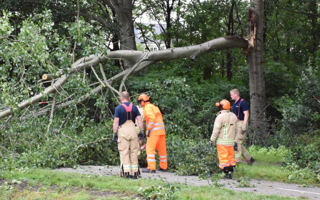 Grote tak breekt van boom en valt op voetpad Strandweg Zevenhuizen