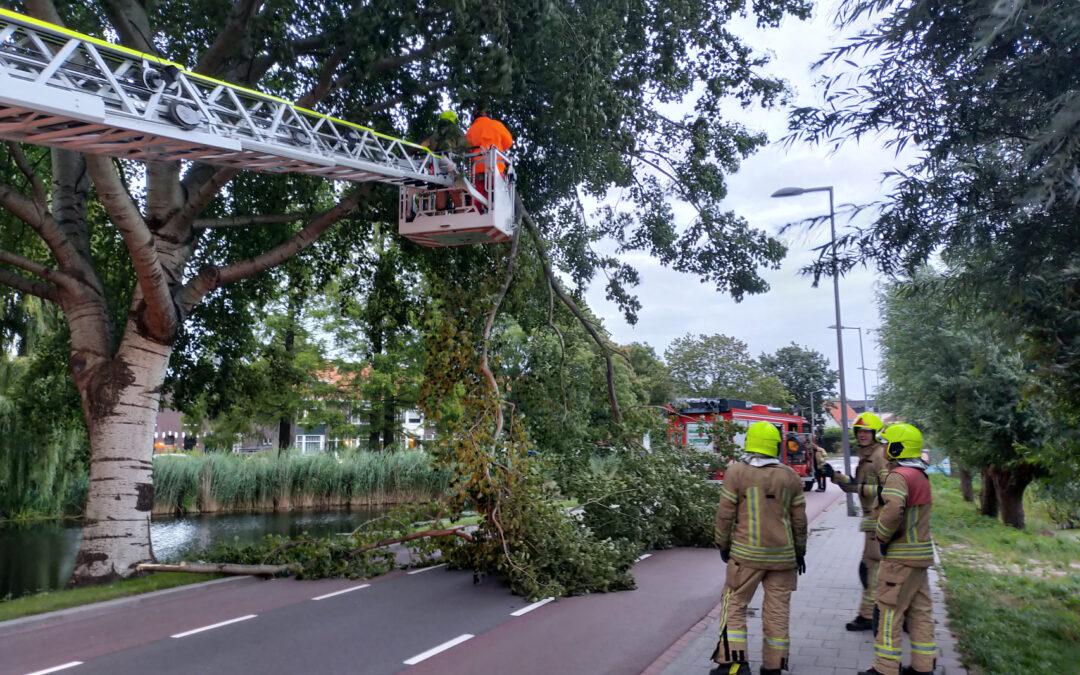 Brandweer verwijderd tak op doorgaande weg Kleiweg Rotterdam
