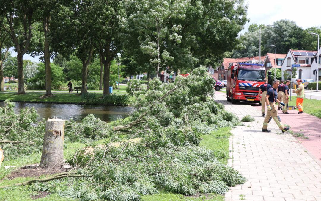 Boom waait om door harde wind Kralingseweg Capelle aan den IJssel