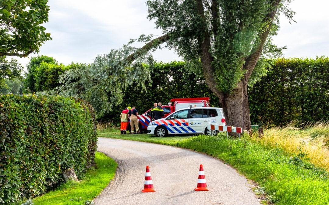 Afgebroken tak verplettert verkeersbord Lageweg Rhoon