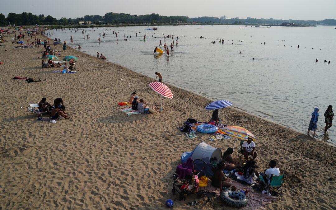 Zwemmen in Zevenhuizerplas is nog steeds veilig, maar neem waarschuwingsborden in acht